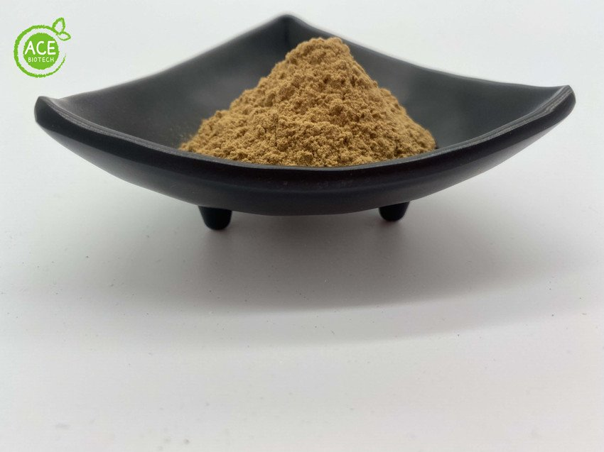 astragalosides astragalus extract