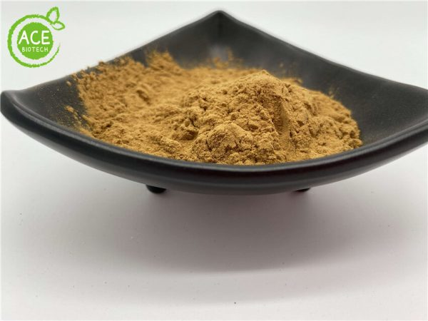 cactus extract weight loss