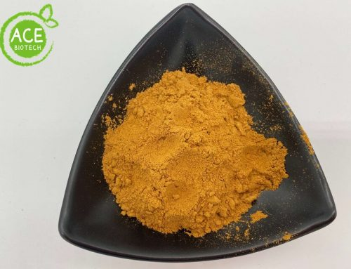 Natural Tomato Powder Water-soluble