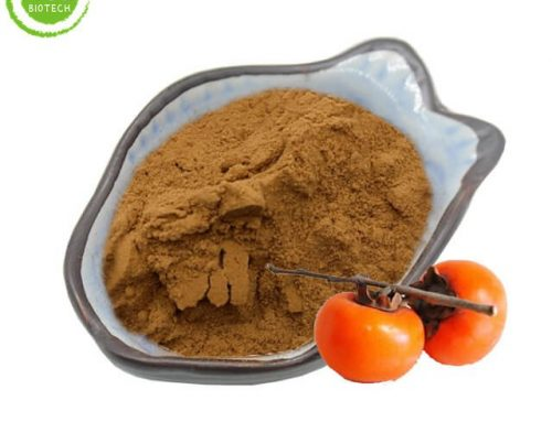 Persimmon leaves extract powder for sale cheap price